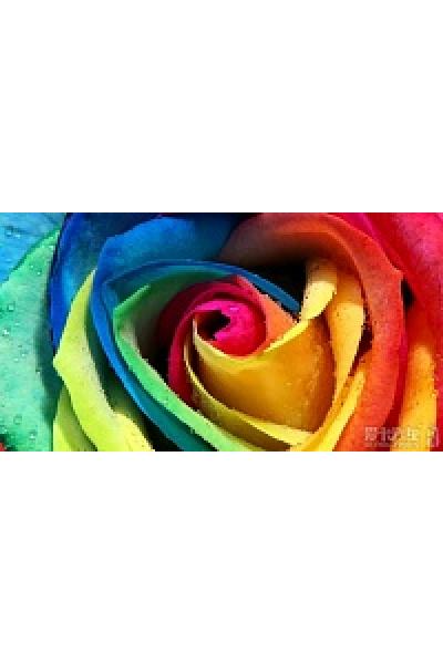 Какие цвета сочетаются в одежде